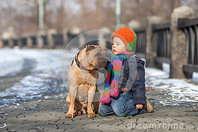 Little boy in the park with his dog friends