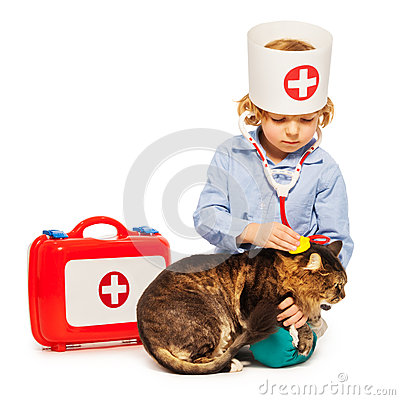 Free Little Boy Playing Doctor Veterinarian With A Cat Royalty Free Stock Photo - 70597065