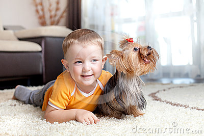 Little boy playing and hugging loving dog york