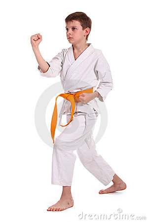 Little Boy Practice Karate Royalty Free Stock Photography - Image: 13589037