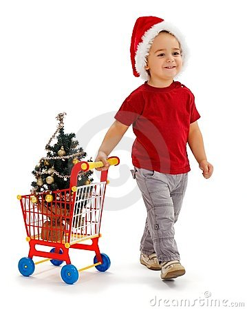 Free Little Boy Pulling Shopping Cart With Xmas Tree Stock Images - 20759244