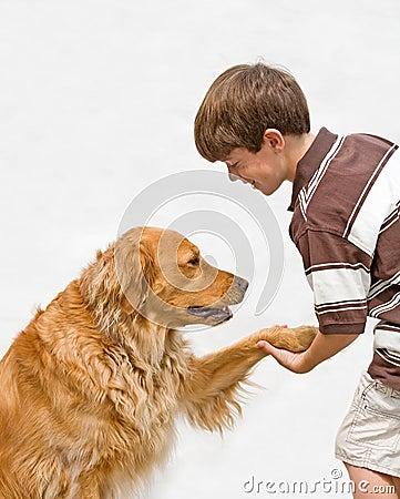 Little Boy que sacude con el perro