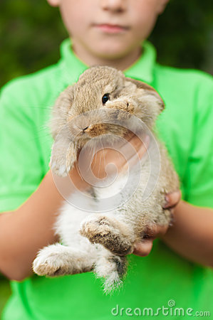 Little boy with a rabbit in his hands