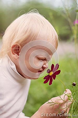 Little Boy Smelling Flower