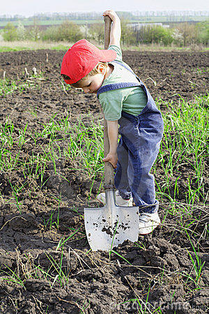 Little boy to dig with big shovel
