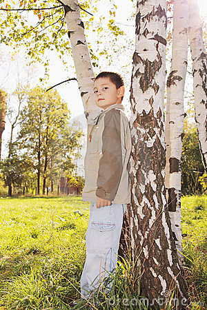 Little boy at tree in park