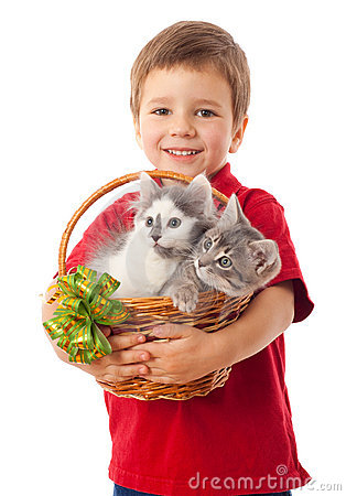 Little boy with two kittens in basket