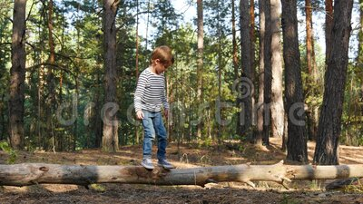 A little boy walks on a log, overcoming obstacles. Happy childhood, development. Outdoor recreation and games. 4K stock video footage