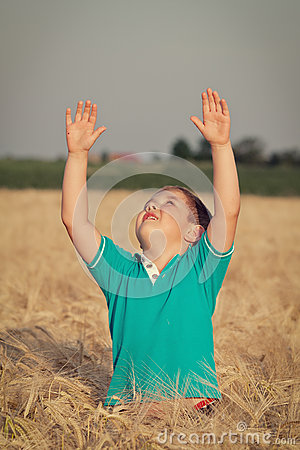 Little boy in wheat field