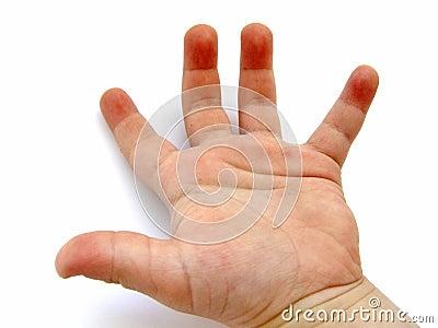 Little Boys Hand