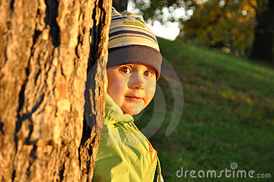 Little child behind tree