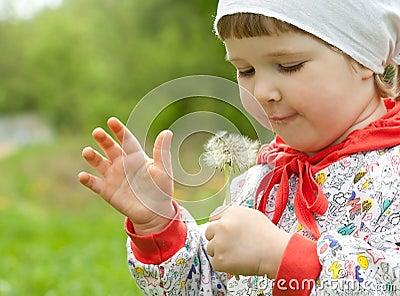 Little child with white dandelion