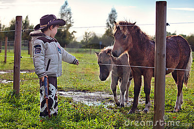 Little cowboy and pony