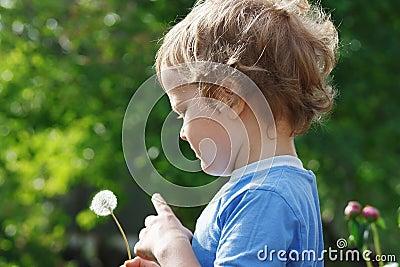 Little cute boy holding a dandelion