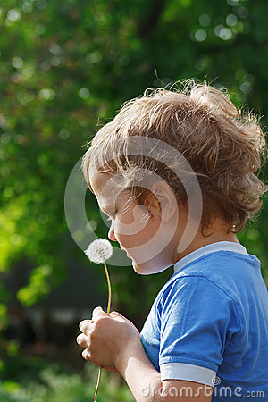 Little Cute Boy Holding A Dandelion Stock Image - Image: 24840161