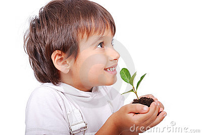 Little cute child holding green plant