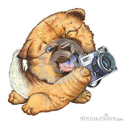 A little dog holding a camera