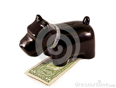 Little dog moneybox