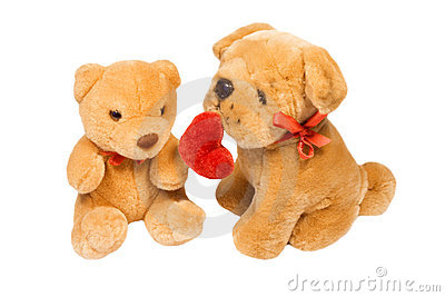 Little dog  and teddy bear