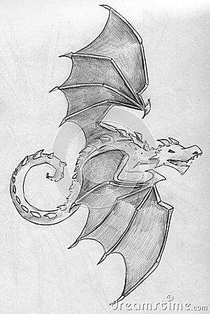 Little dragon sketch