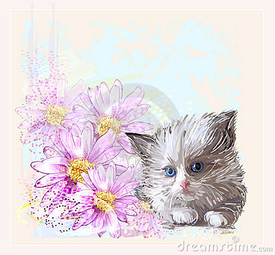 little fluffy kitten and gerberas