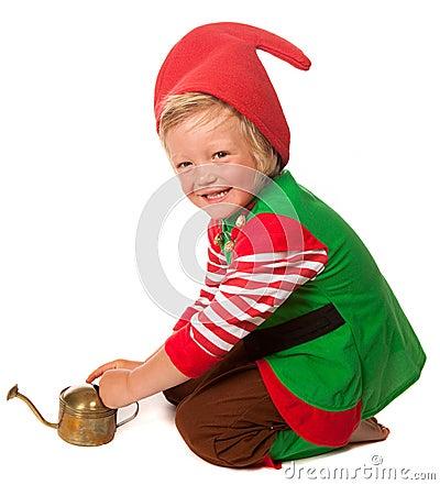 Little garden gnome