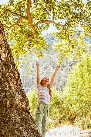 Free Little Girl And Big Tree Royalty Free Stock Images - 104848809
