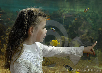 Little girl and aquarium