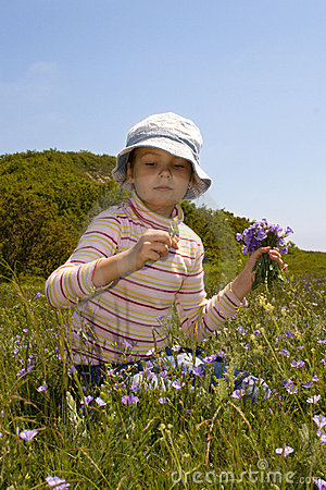 Free Little Girl Collect Flowers Royalty Free Stock Images - 5214189