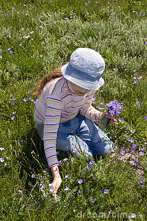 Free Little Girl Collect Flowers Stock Photos - 5214263