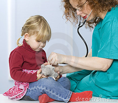 Little girl and doctor study plush toy