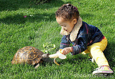 Little girl feeding her tortoise.