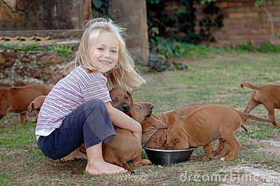 Little girl feeding puppies
