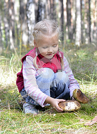 Little girl gathers mushrooms