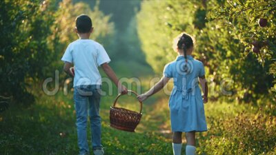 Little girl and her brother carry basket along beautiful nature. Rear view. Slowmo. Slow motion. Copy space. 4K. Concept happy childhood. The girl and little stock video footage