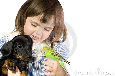 Little girl holds Parrot and dog