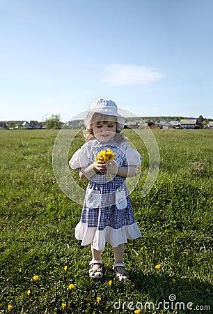 Little girl holds yellow dandelions on green field