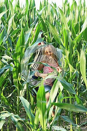 Free Little Girl In Corn Field Stock Image - 42630901
