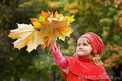 Little girl keeps leafes in park in autumn