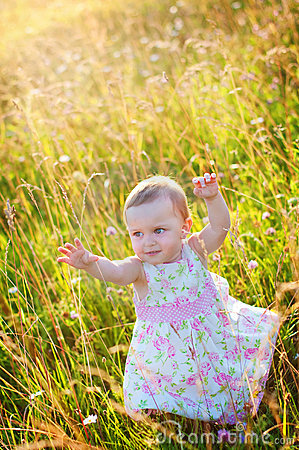 Little girl in the meadow
