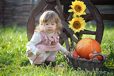 Little girl near big pumpkin and sunflower