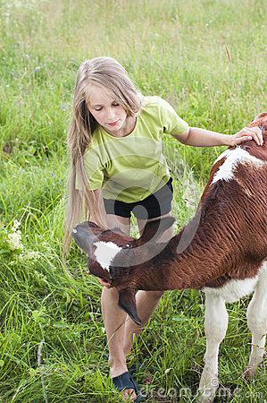 Little girl petting a calf