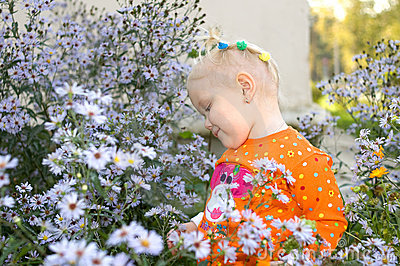 Little girl play in aster flowers in the park.