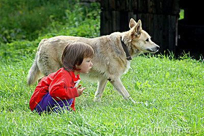 Little girl playing with dog