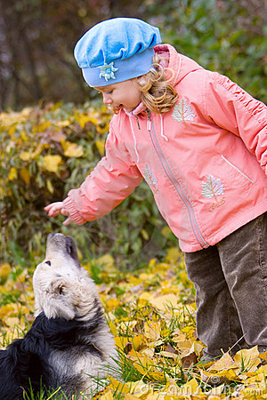 Little girl playing with dog in autumn park