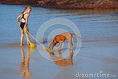 Beach fun with dog