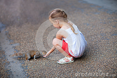 Little girl and squirrel