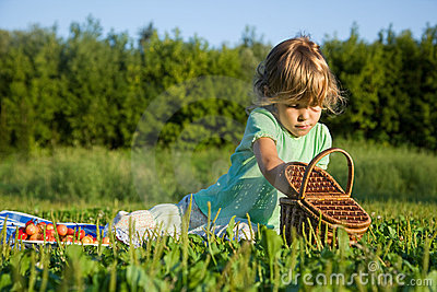 Little Girl will get from basket sweet cherries