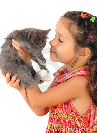 Free Little Girl With Gray Kitty In Hands Royalty Free Stock Image - 16122376