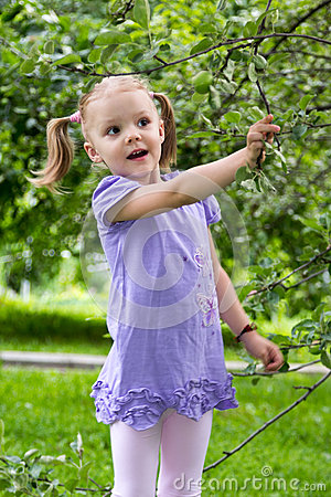 Free Little Girl With Pigtails In Amazement Looks At Apples On A Bran Stock Photography - 60174922